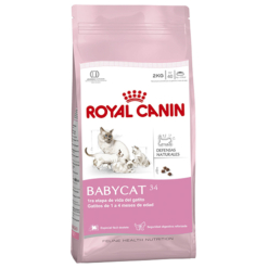 Royal Canin Baby Cat 34